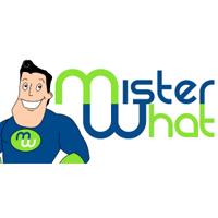 Logo Mister What