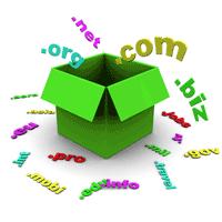 Meedere domeinnamen voor 1 website?